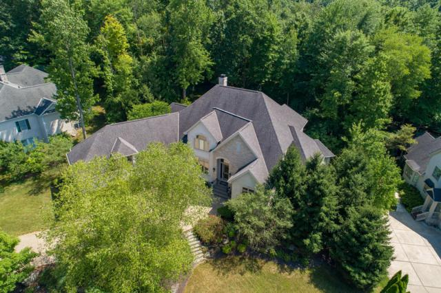 5127 Canterbury Drive, Powell, OH 43065 (MLS #219025311) :: RE/MAX ONE