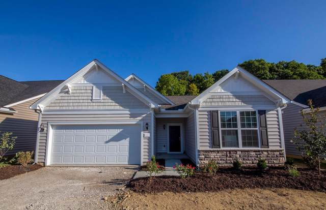 5782 Knob Creek Drive, Westerville, OH 43081 (MLS #219034809) :: Huston Home Team