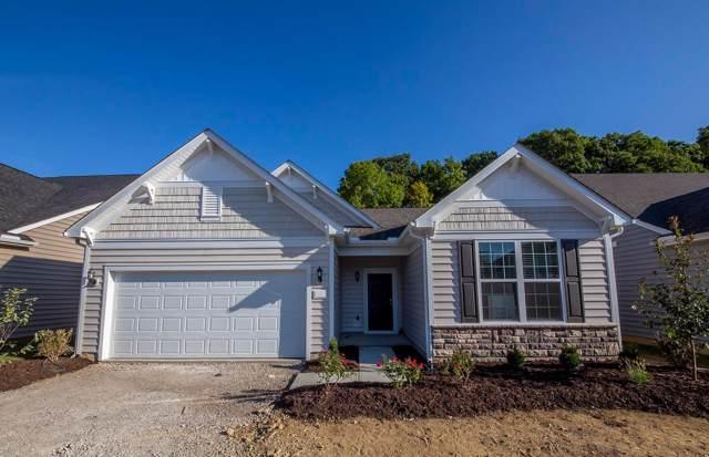 5782 Knob Creek Drive, Westerville, OH 43081 (MLS #219034809) :: Keller Williams Excel