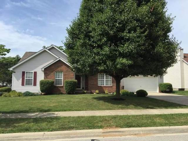 235 Chesterville Court, Canal Winchester, OH 43110 (MLS #219035525) :: Huston Home Team