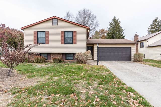 3818 Quail Hollow Drive, Columbus, OH 43228 (MLS #219043152) :: Susanne Casey & Associates