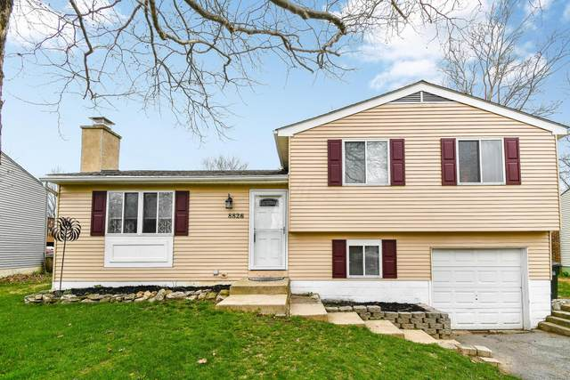8826 Crestwater Drive, Galloway, OH 43119 (MLS #220009380) :: Signature Real Estate