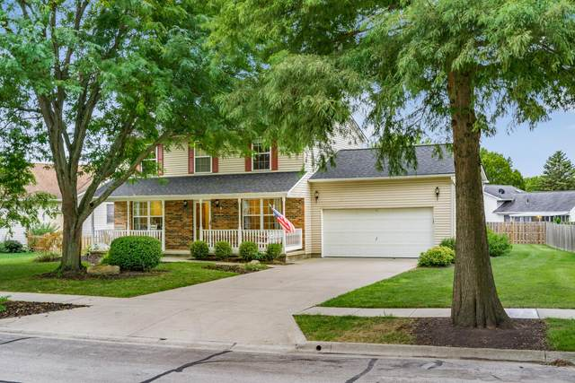 303 N Sarwil Drive, Canal Winchester, OH 43110 (MLS #220032046) :: The Willcut Group