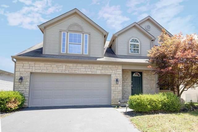 9256 Prestwick Green Drive, Columbus, OH 43240 (MLS #220033006) :: MORE Ohio