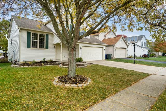6072 Carmell Drive, Columbus, OH 43228 (MLS #220036184) :: Exp Realty