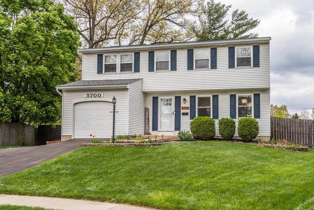 5700 Bashaw Drive, Westerville, OH 43081 (MLS #221012291) :: The Raines Group