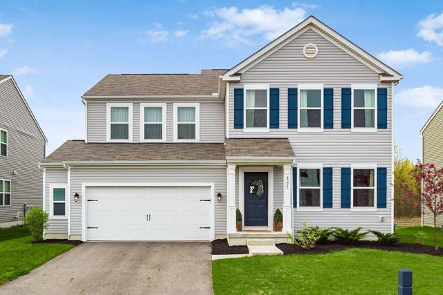 8095 Narrow Leaf Drive, Blacklick, OH 43004 (MLS #221012949) :: The Raines Group