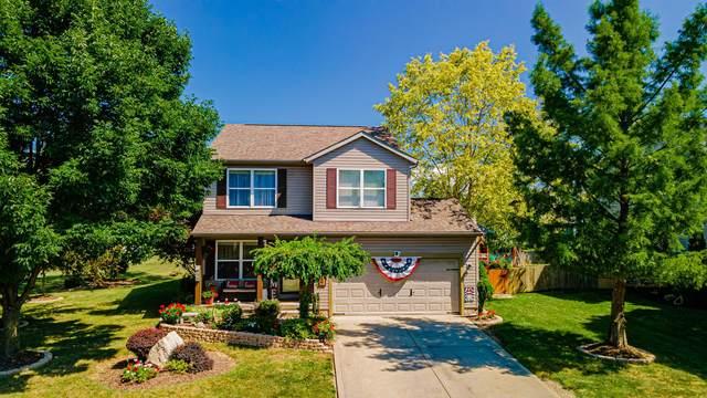557 Dowling Avenue, Ashville, OH 43103 (MLS #221029279) :: Core Ohio Realty Advisors