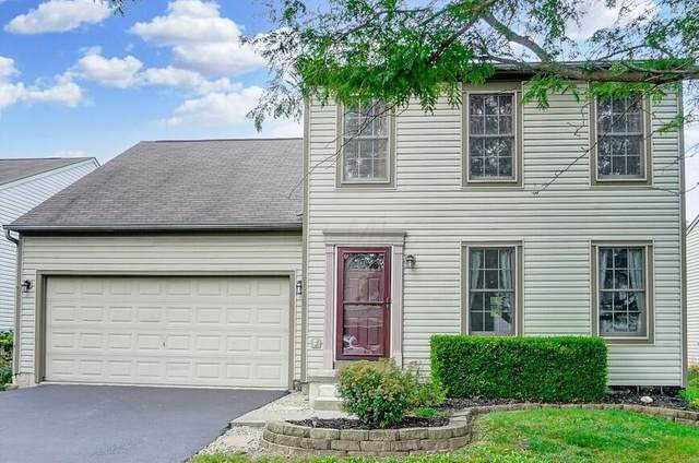 8585 Olenbrook Drive, Lewis Center, OH 43035 (MLS #221031104) :: The Gale Group