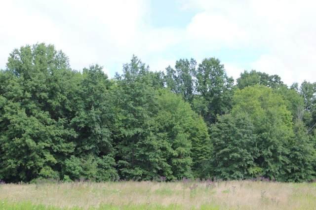0 Fancher Road, New Albany, OH 43054 (MLS #221031529) :: Ackermann Team