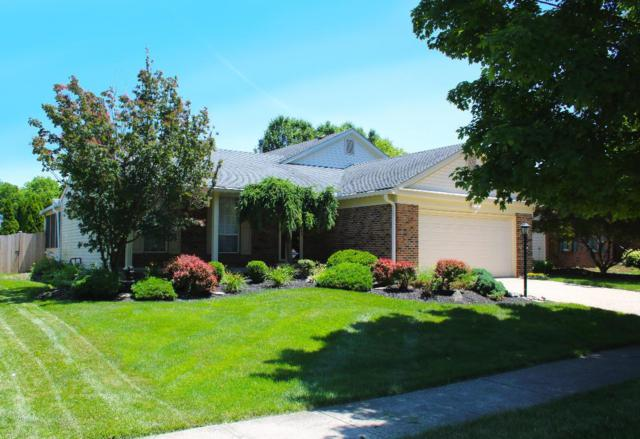 2168 Ransom Oaks Drive, Columbus, OH 43228 (MLS #218019510) :: Exp Realty
