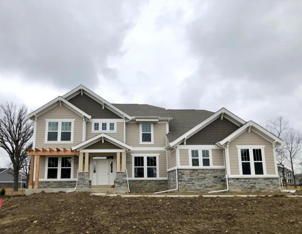 3673 Goldenrod Street, Hilliard, OH 43026 (MLS #218024262) :: Signature Real Estate