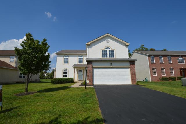 8006 Harvestmoon Drive, Reynoldsburg, OH 43068 (MLS #218028201) :: Shannon Grimm & Partners