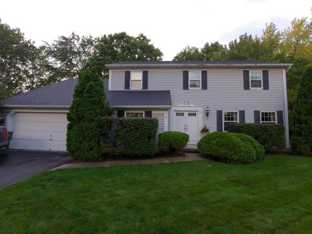 7791 Strathmoore Road, Dublin, OH 43016 (MLS #218039867) :: Brenner Property Group | KW Capital Partners