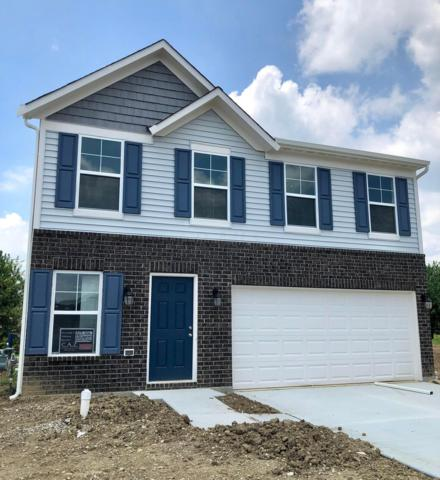 3781 Sugarbark Drive, Canal Winchester, OH 43110 (MLS #219008439) :: RE/MAX ONE
