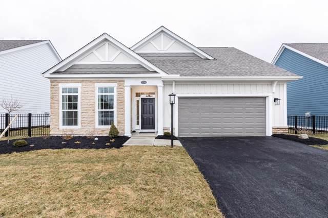 5738 Adalyn Lane, Dublin, OH 43016 (MLS #219037428) :: Signature Real Estate