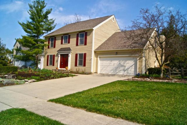 236 Ridge Side Drive, Powell, OH 43065 (MLS #218008186) :: RE/MAX ONE