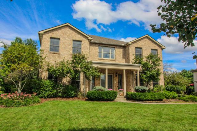 1310 Lindenwald Drive, New Albany, OH 43054 (MLS #218033112) :: Berkshire Hathaway HomeServices Crager Tobin Real Estate