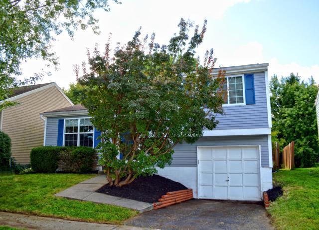 3113 Dewbourne Drive, Reynoldsburg, OH 43068 (MLS #218033465) :: Berkshire Hathaway HomeServices Crager Tobin Real Estate