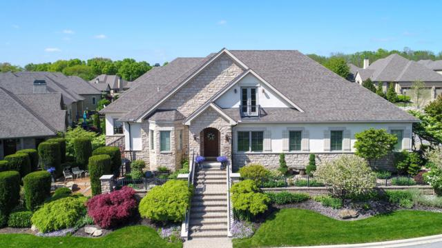 3258 River Highlands Way, Dublin, OH 43017 (MLS #219010708) :: RE/MAX ONE