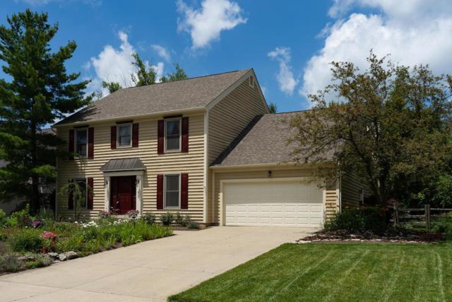 236 Ridge Side Drive, Powell, OH 43065 (MLS #218008186) :: Susanne Casey & Associates