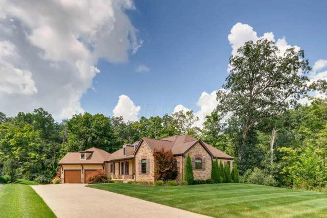 9780 Riverway Run, Powell, OH 43065 (MLS #218014049) :: Berkshire Hathaway HomeServices Crager Tobin Real Estate