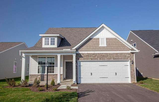 6059 Limewood Drive Lot 9, Westerville, OH 43081 (MLS #220009328) :: Angel Oak Group