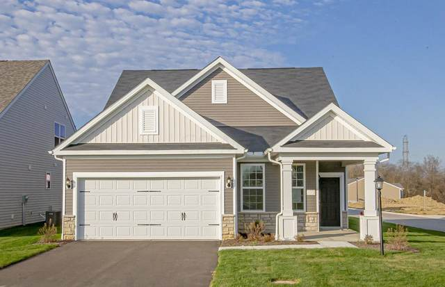 6067 Limewood Drive Lot 10, Westerville, OH 43081 (MLS #220009332) :: Angel Oak Group