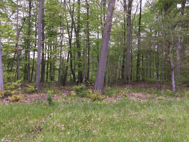 7326 St. Rt. 19 Unit 11, Lot 15, Mount Gilead, OH 43338 (MLS #217016249) :: Core Ohio Realty Advisors