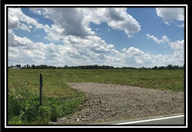 14702 Fancher Road, New Albany, OH 43054 (MLS #217021492) :: Cutler Real Estate