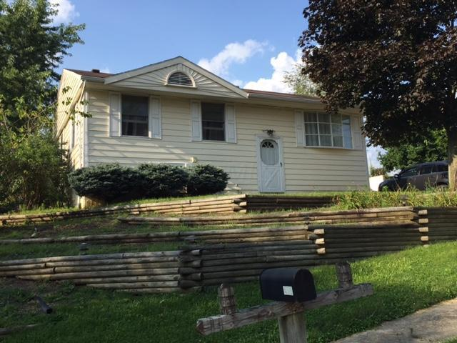 450 Huntsworth Drive, Johnstown, OH 43031 (MLS #217029080) :: The Clark Realty Group @ ERA Real Solutions Realty