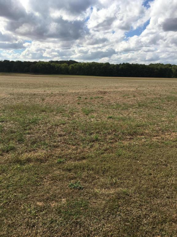 Lot 2 Sr 316, South Bloomfield, OH 43103 (MLS #217037272) :: The Mike Laemmle Team Realty