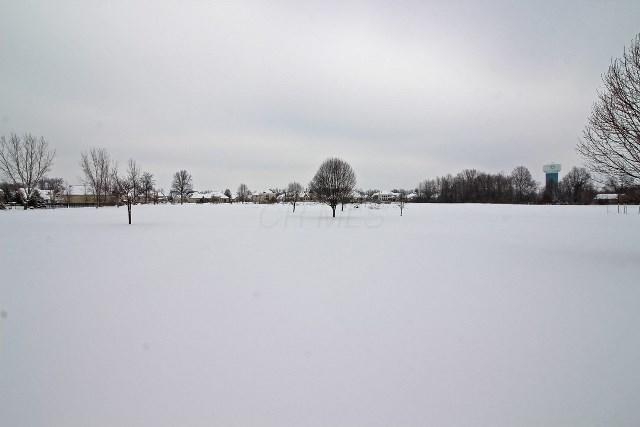 0 Blacklick Eastern Road NW, Pickerington, OH 43147 (MLS #218001431) :: Signature Real Estate