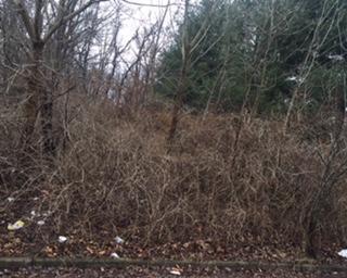 1786 W Walnut Street, Lancaster, OH 43130 (MLS #218004888) :: CARLETON REALTY