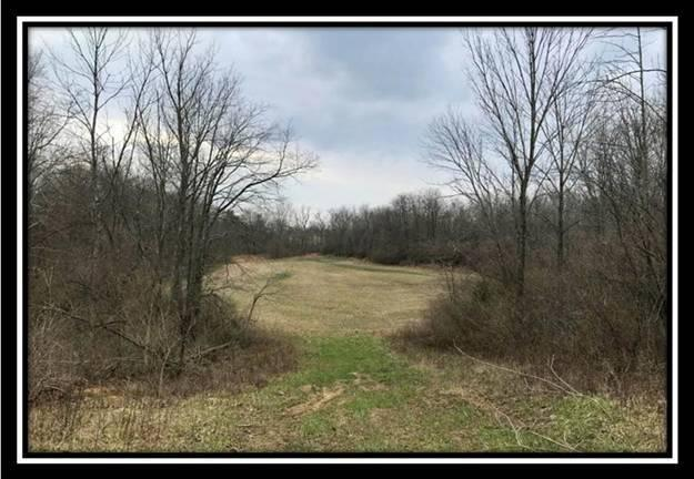 12800 Gibson Road, Ashville, OH 43103 (MLS #218012169) :: The Mike Laemmle Team Realty