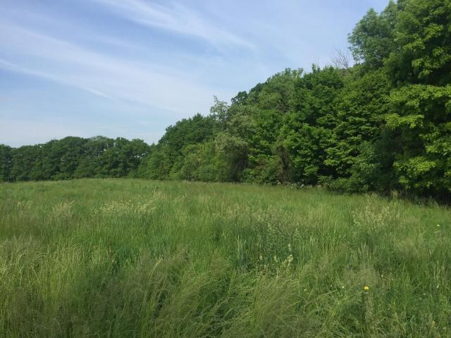 0 Africa Road, Galena, OH 43021 (MLS #218013167) :: Exp Realty