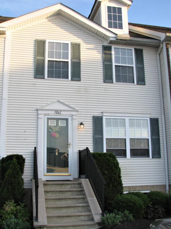 1061 Shady Lake Drive, Columbus, OH 43228 (MLS #218020385) :: Signature Real Estate