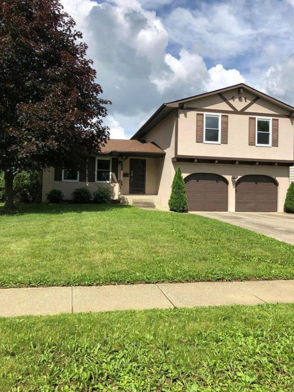 6256 Skywae Drive, Columbus, OH 43229 (MLS #218022844) :: Signature Real Estate