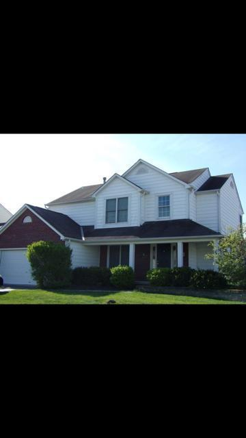 6433 Herb Garden Court, New Albany, OH 43054 (MLS #218026018) :: The Raines Group