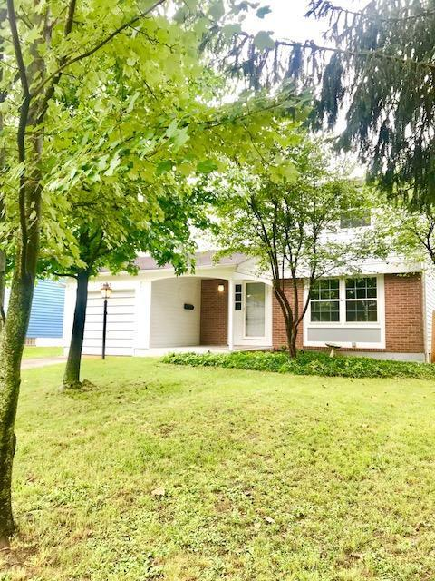 3433 Montford Road S, Westerville, OH 43081 (MLS #218031354) :: The Columbus Home Team
