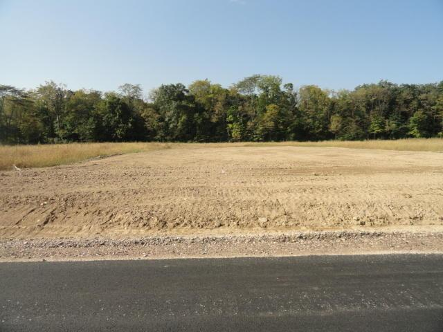 8615 Fitzhamon Lot 19, Plain City, OH 43064 (MLS #219006032) :: Shannon Grimm & Partners