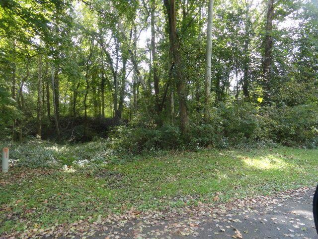 0 Chester Estates Drive Lot #129, Chesterville, OH 43317 (MLS #219006652) :: ERA Real Solutions Realty