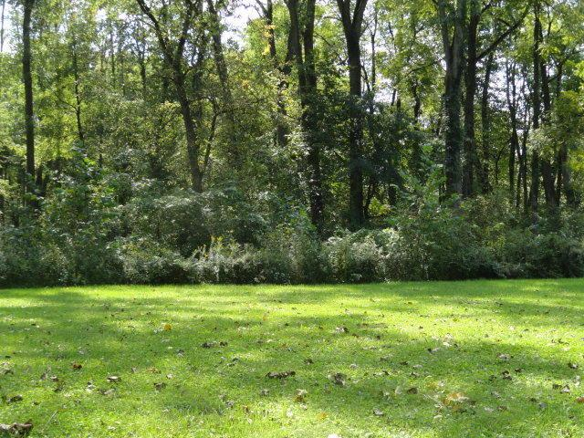 0 Chester Estates Drive Lot #124, Chesterville, OH 43317 (MLS #219006657) :: ERA Real Solutions Realty
