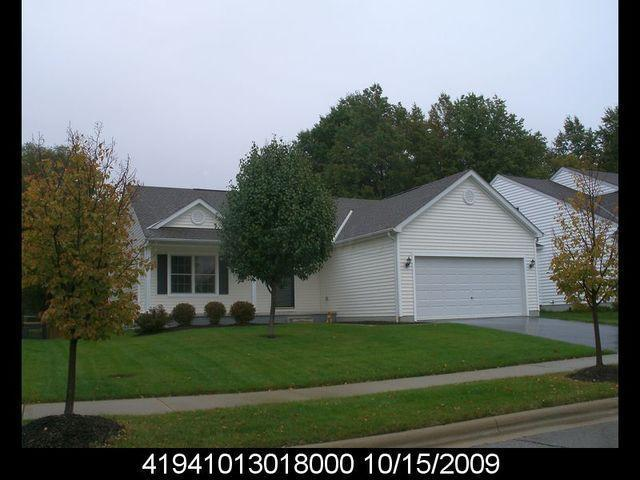 295 Indigo Blue Street, Delaware, OH 43015 (MLS #219007189) :: RE/MAX ONE