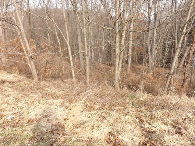 546 Edgehill Circle, Logan, OH 43138 (MLS #219007387) :: Brenner Property Group | Keller Williams Capital Partners