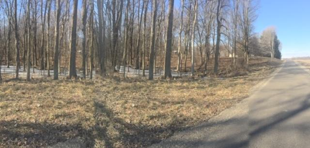 0 Township Road 188, Marengo, OH 43334 (MLS #219008578) :: Brenner Property Group | Keller Williams Capital Partners