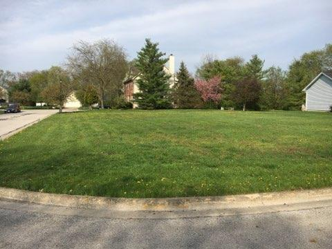 0 Fallen Timbers Court, Canal Winchester, OH 43110 (MLS #219012462) :: Signature Real Estate