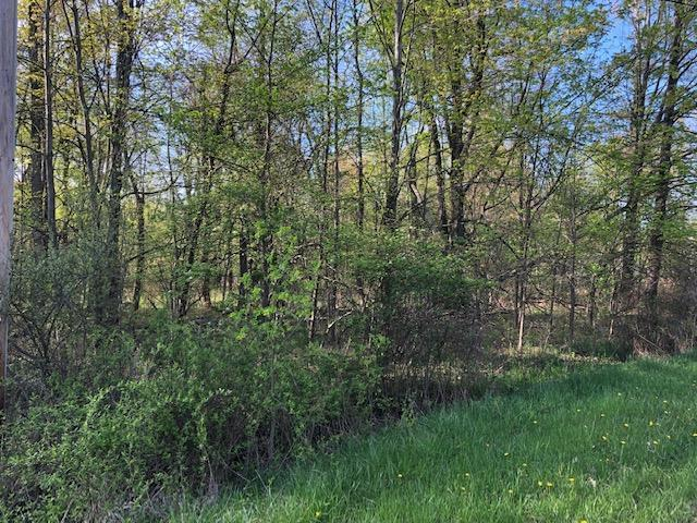 7326 State Route 19 Unit 6, Lots 16, Mount Gilead, OH 43338 (MLS #219016095) :: Brenner Property Group | Keller Williams Capital Partners