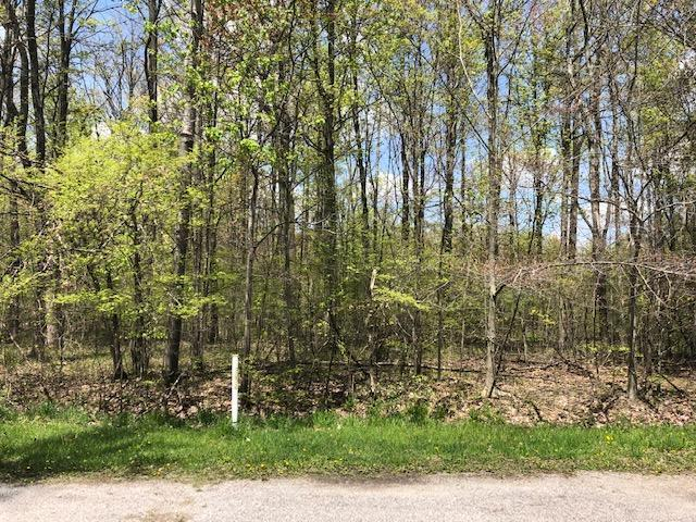 7326 State Route 19 Unit 5 Lots 103, Mount Gilead, OH 43338 (MLS #219016107) :: RE/MAX ONE