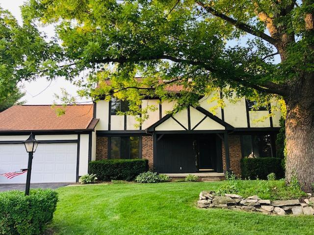 1654 Otter Court, Grove City, OH 43123 (MLS #219024109) :: Shannon Grimm & Partners Team